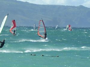 Kanaha beach is a popular spot for windsurfers as well as beach goers